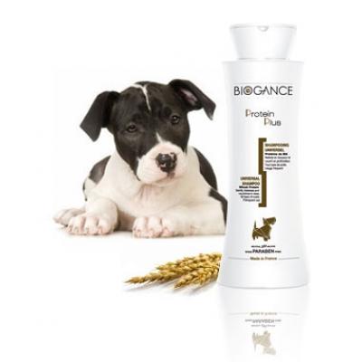 Sampon Biogance Protein Plus 250 ml 0