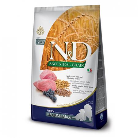 N&D Ancestral Grain Puppy Medium & Maxi Lamb and Blueberry 12 KG [0]