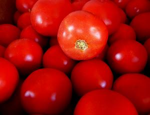 Seminte de tomate determinate Bobcat F1, 1000 sem [0]