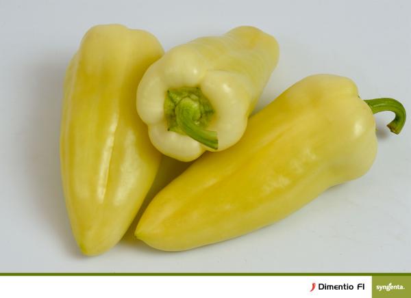 Seminte de ardei gras galben, Dimetino F1, 500 sem [0]