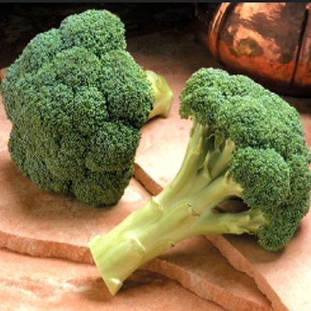 Seminte de broccoli Monaco F1, 2500 seminte [0]
