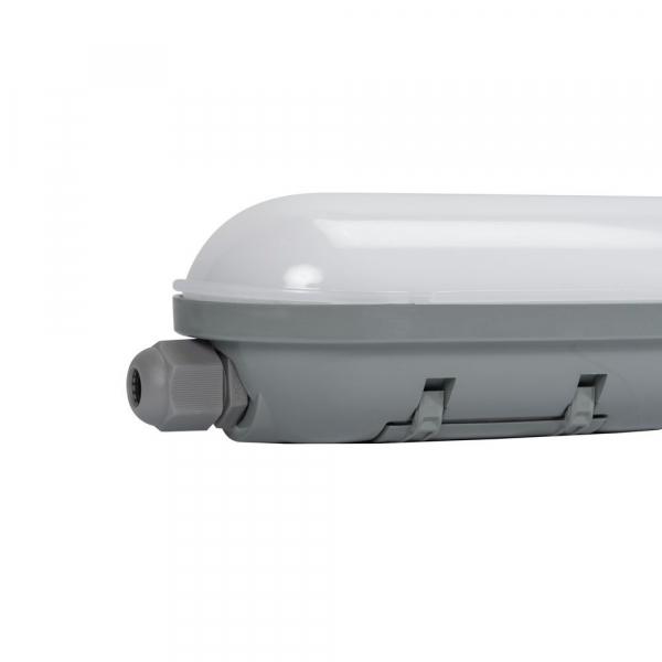 CORP NEON LED 50W 1