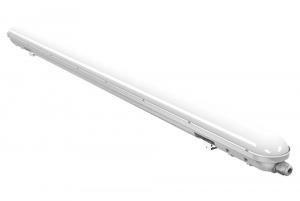 CORP NEON LED 50W0