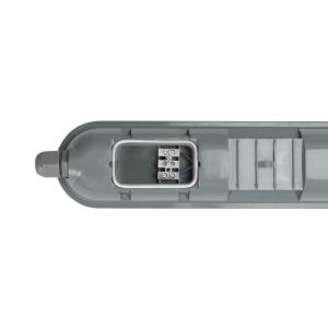 CORP NEON LED 50W2