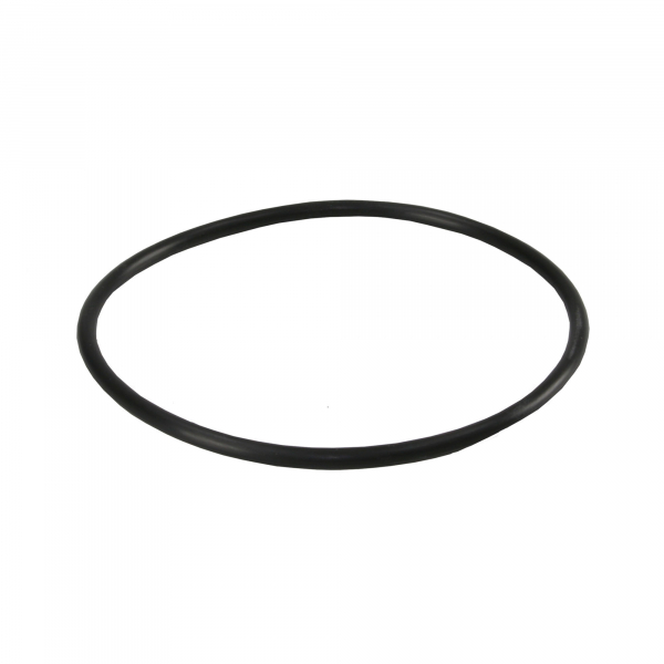 Garnitura tip Oring pentru carcasele filtrelor BigBlue 0