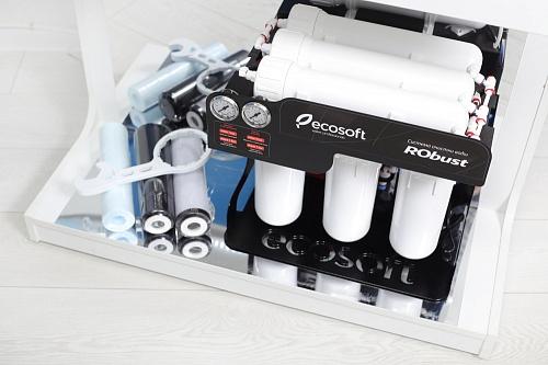 Sistem de filtrare al apei profesional cu osmoza inversa Ecosoft RObust 60 L/h 3