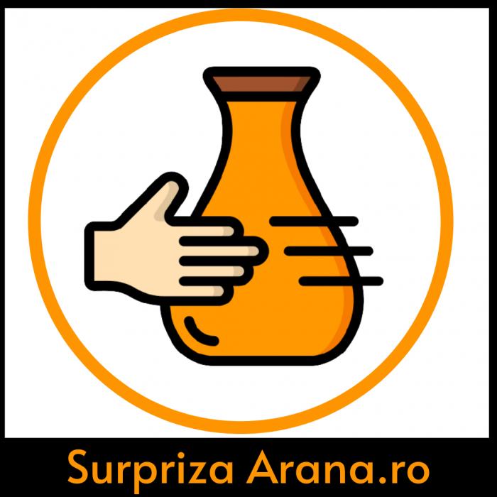 Produs surpriza marca Arana.ro [0]