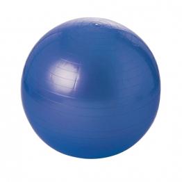 Minge Fitness 55 cm [0]