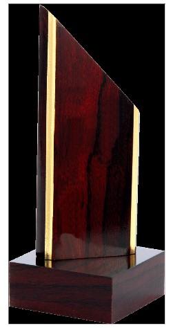 Trofeu lemn TROF1 [1]