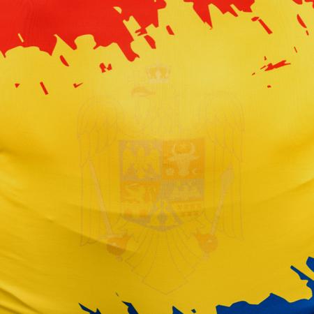 Dres de lupte ARMURA Tricolor V1 RGA [4]