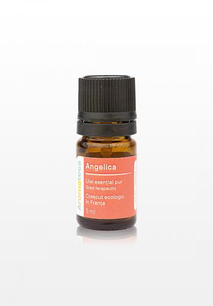 Aromateca Angelica - 5 ml 0