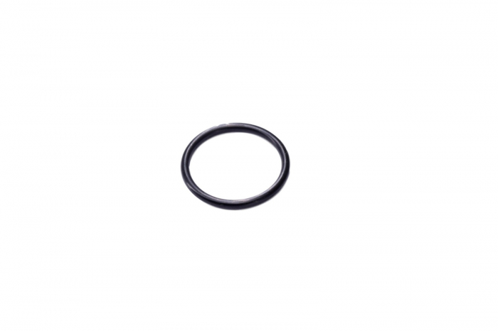 O-ring buldoexcavator New Holland-CARRARO [0]