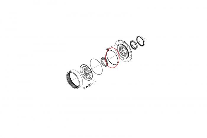 O-ring 028579-CARRARO [1]