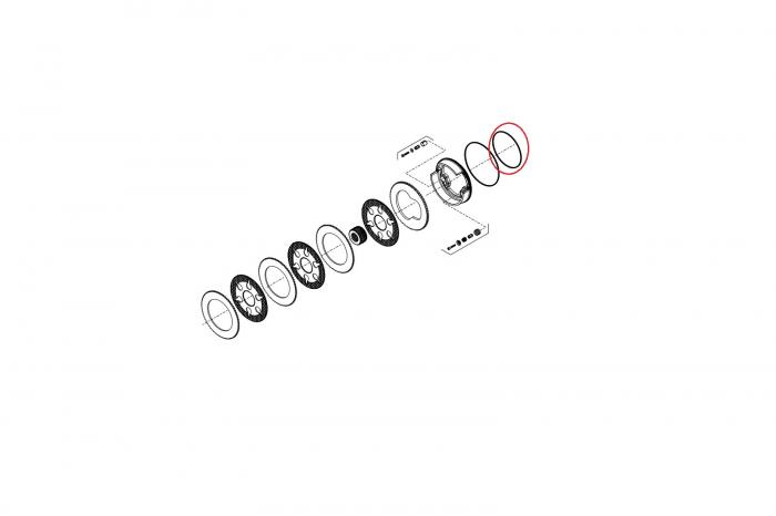 O-ring 139231-CARRARO 1