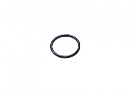 O-ring 143837-CARRARO [0]