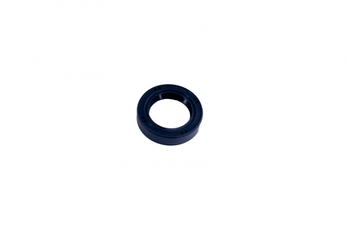 Simering 025107-CARRARO 0