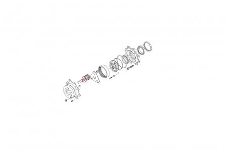 Ace rulment 028281-CARRARO [1]