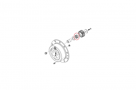 Ace rulment 028297-CARRARO1