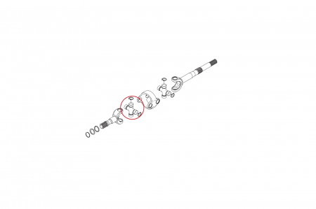 Cruce planetara 040889-CARRARO1