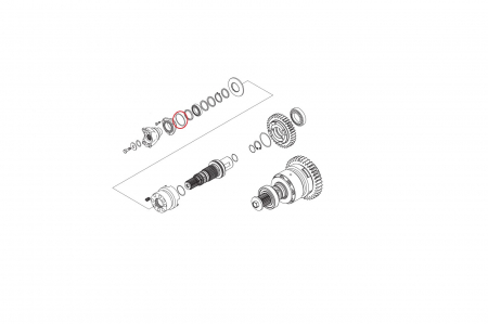 O-ring 028613-CARRARO1