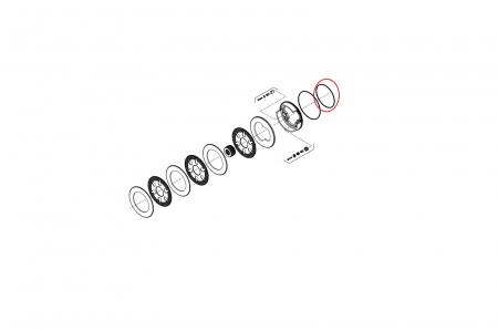 O-ring 139231-CARRARO1