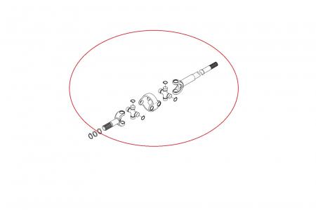 Planetara 149148-CARRARO1