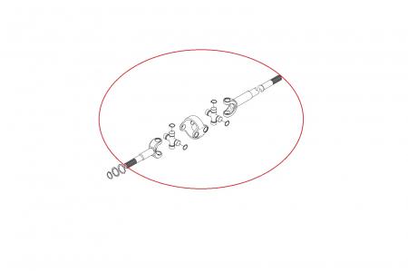 Planetara 149582-CARRARO [1]