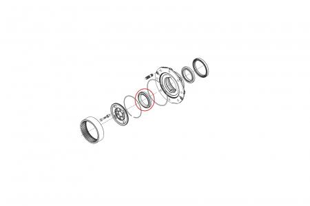 Rulment butuc 045181-CARRARO [1]