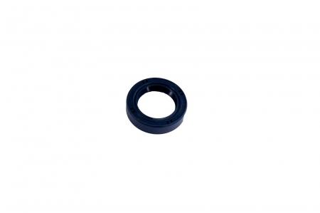 Simering 025107-CARRARO [1]