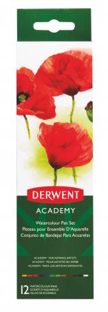 Set acuarele 12 culori cu pensula Derwent Academy™3