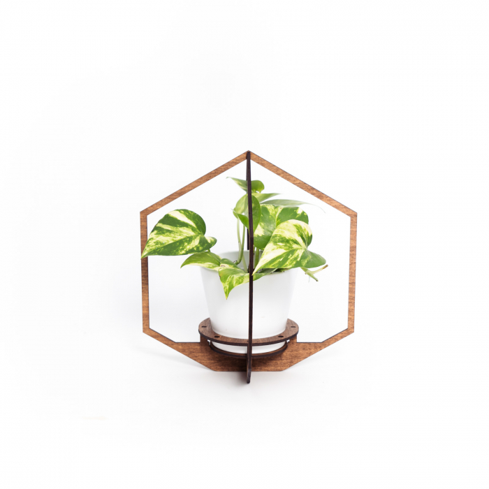 Masca_Ghiveci_Alba_cu_Suport_Lemn_Hexagon_decorativa [0]