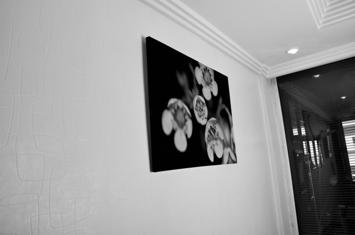 Tablou Canvas - Black and White Flower [4]