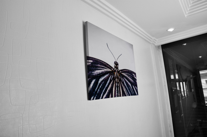 Tablou Canvas - Butterfly [4]