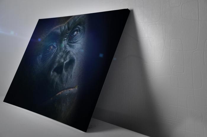 Tablou Canvas - Gorilla [2]