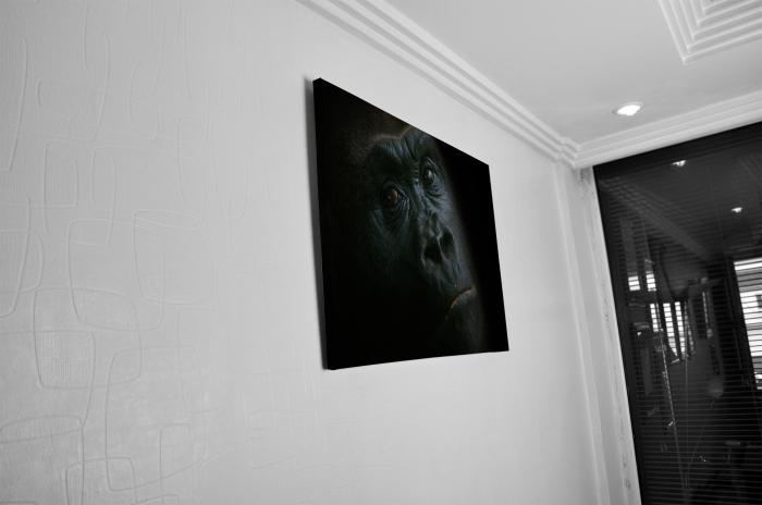 Tablou Canvas - Gorilla [4]