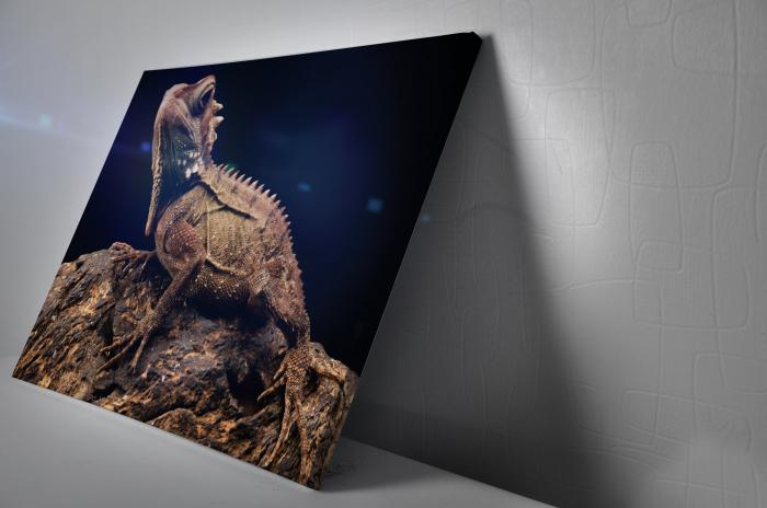 Tablou Canvas - Iguana [2]