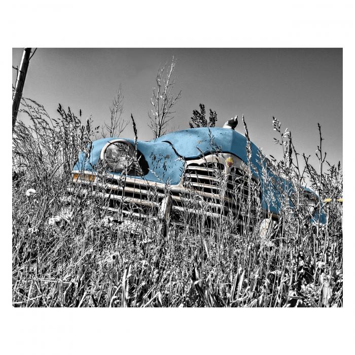 Tablou Canvas - Old car Blue [0]