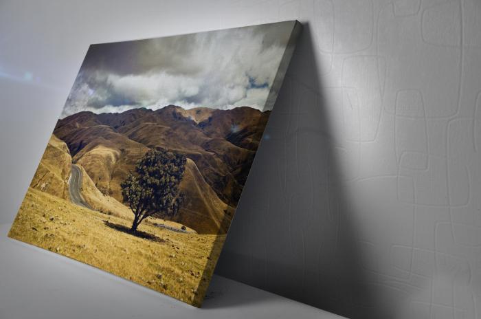 Tablou Canvas - One Tree [2]