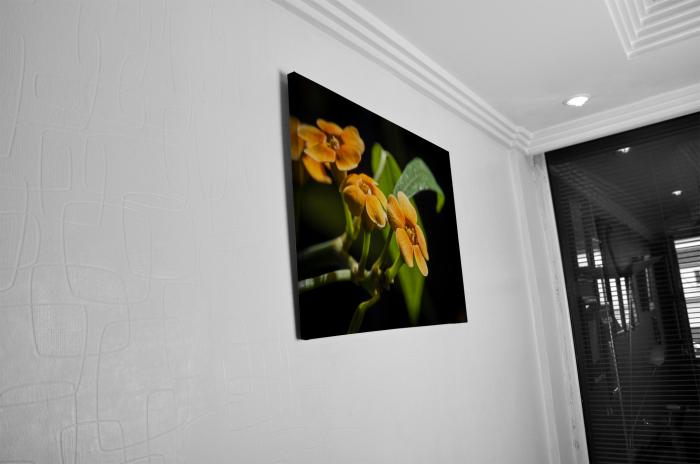 Tablou Canvas - Orchid Flower [4]
