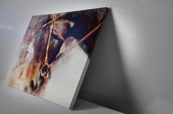Tablou Canvas - Painted Horse [2]