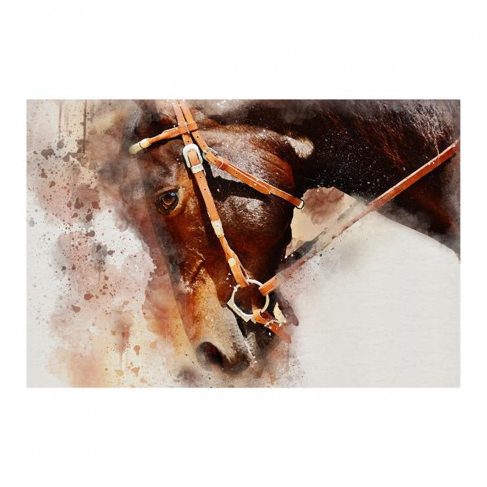 Tablou Canvas - Painted Horse [0]