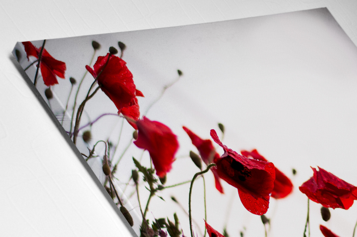 Tablou Canvas - Poppies [3]