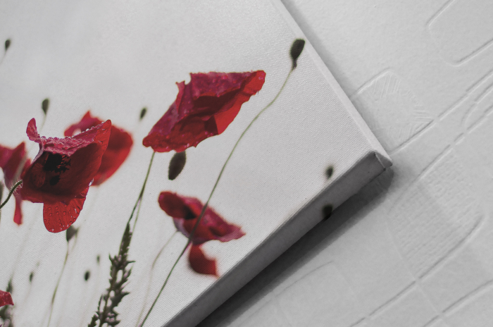 Tablou Canvas - Poppies [1]