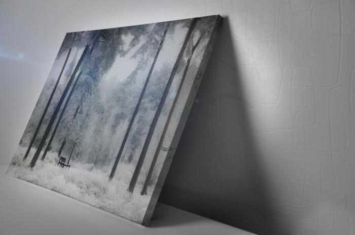Tablou Canvas - Winter view [2]