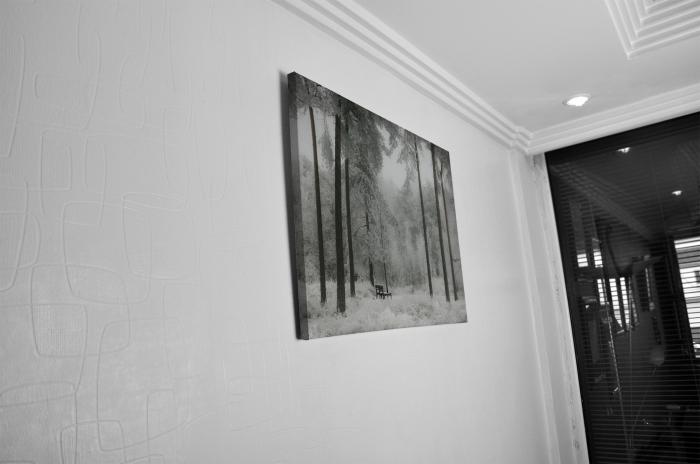 Tablou Canvas - Winter view [4]
