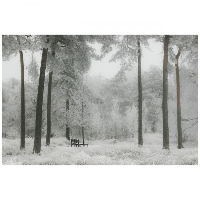 Tablou Canvas - Winter view [0]