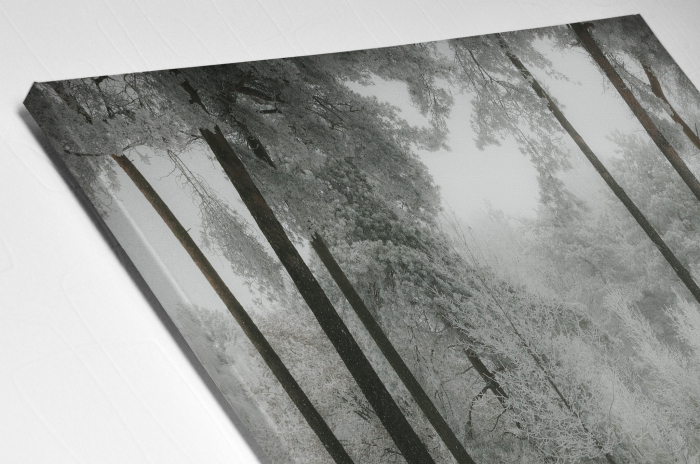 Tablou Canvas - Winter view [3]