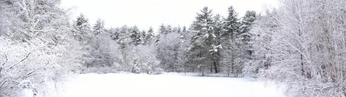 Tablou Multi-Canvas Winter View [1]