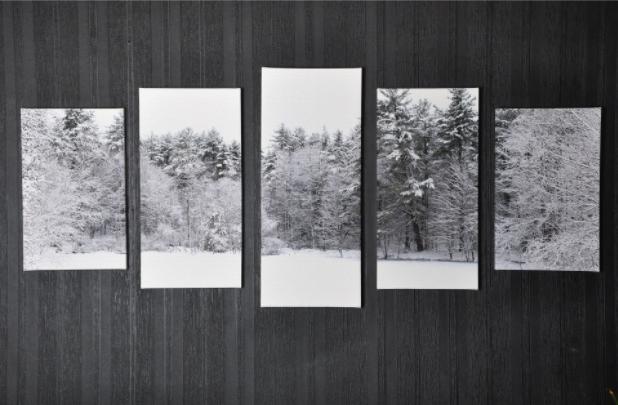 Tablou Multi-Canvas Winter View [2]