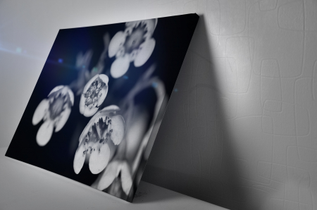 Tablou Canvas - Black and White Flower [2]